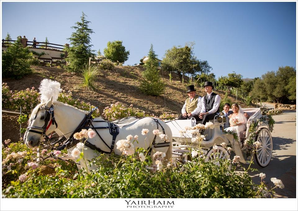 serendipity-garden-weddings-photos-Yair-Haim-19