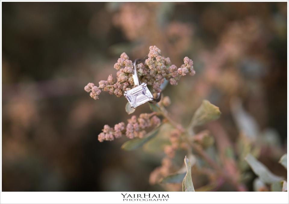 Rancho-Palos-Verdes-engagement-photos-15