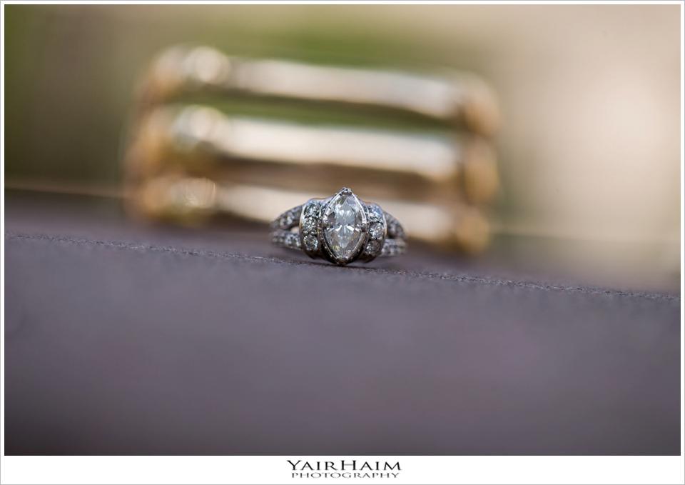 Millennium-Biltmore-Los-Angeles-wedding-engagement-photos-15