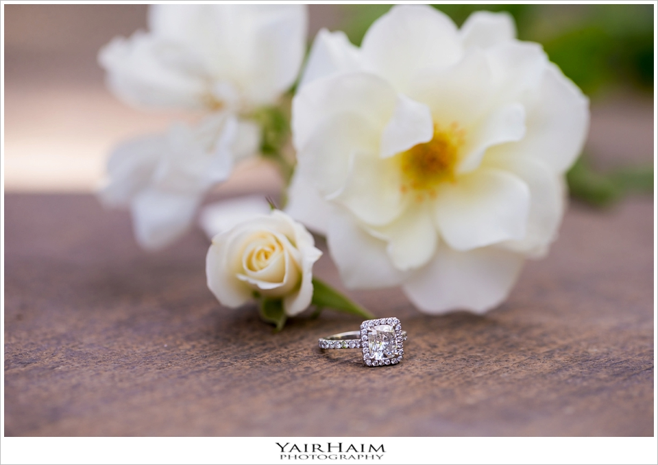 Valencia-Bridgeport-engagement-photos-19