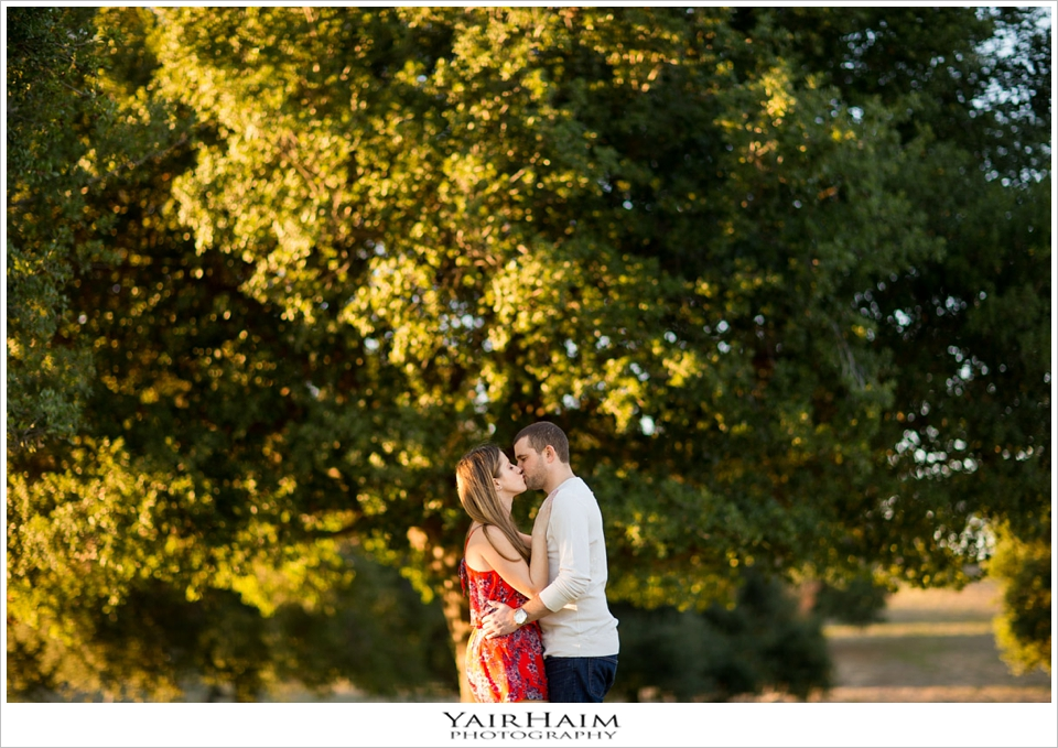 Kenneth-Hahn-engagement-pictures-10