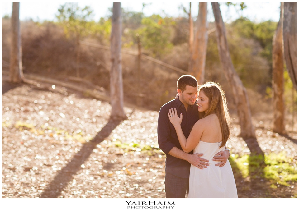 Kenneth-Hahn-engagement-pictures-4