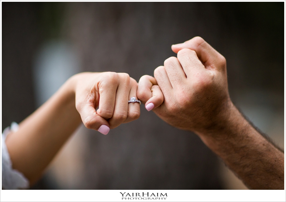 Pasadena-engagement-photos-forest-session-yair-haim-17