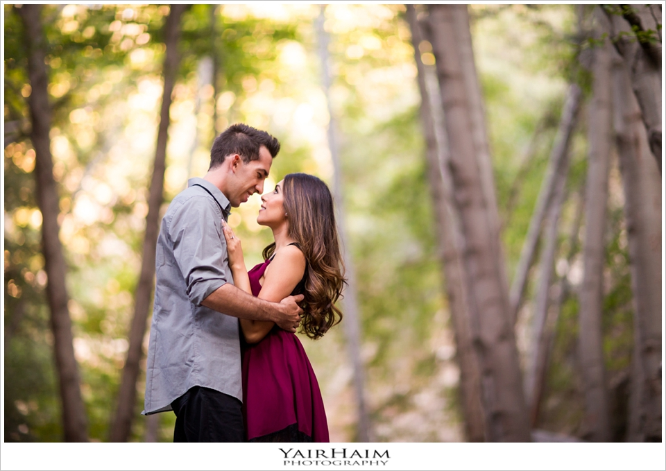 Pasadena-engagement-photos-forest-session-yair-haim-4